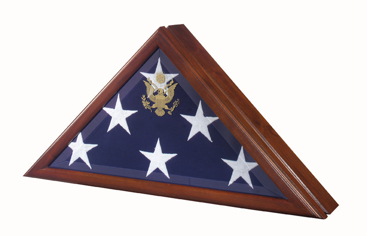 Vice Presidental Flag Case